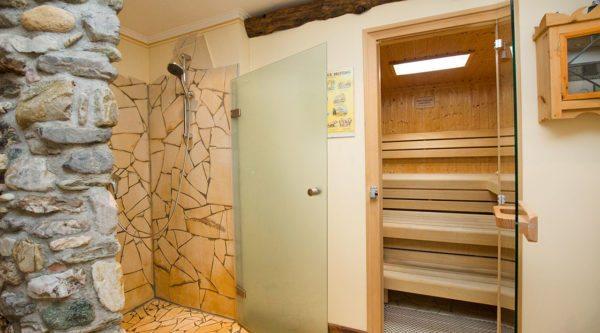 Wellness & Sauna, Ferienwohnungen Ellmer in Flachau, Reitdorf
